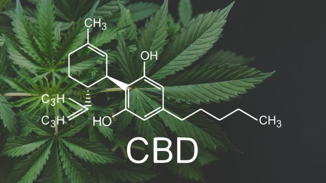 FDA warns company marketing unapproved cannabidiol products with unsubstantiated claims to treat cancer, Alzheimer's disease, opioid withdrawal, pain and pet anxiety